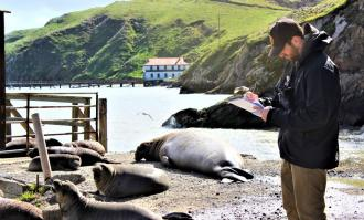 photo of Wyatt Walsh '21 recording data for elephant seals research at Point Reyes National Seashore