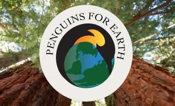 2021 Earth Day logo superimposed over redwood tree background for HP image
